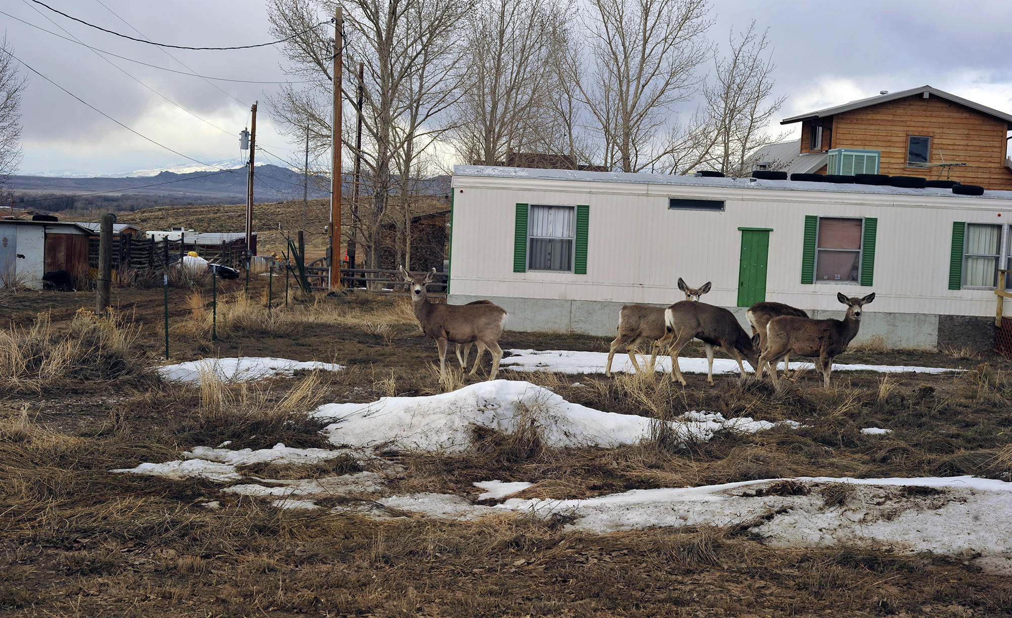 Wyoming Local Residents