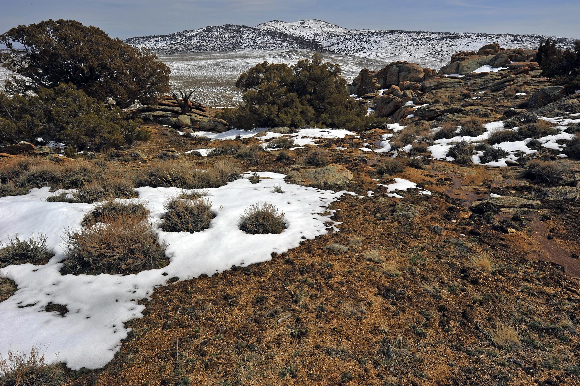 Wyoming Winter Scene