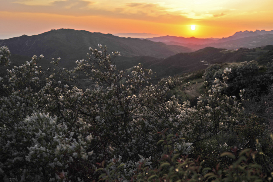 Corral Canyon Sunset